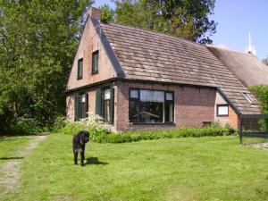 Vakantieboerderij Rintjeshoek aan de voet van natuurgebied nationaal Park Lauwersmeer in Friesland