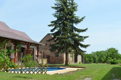 Gezellig, ruim, vrijstaand vakantiehuis in ZW Hongarije met privézwembad