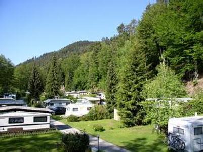 Camping Muellerwiese, Zwarte woud