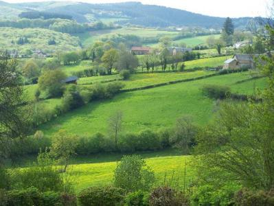 La Tulipe : natuur, rust, cultuur  in midden Frankrijk /Bourgogne