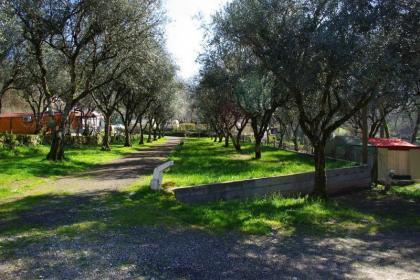 Camping in het groene hart van Portugal