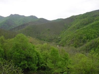 Kamperen midden in de natuur op kleinschalige eco boerderij