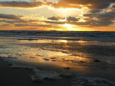 Vrijstaande vakantiewoning vlakbij zee, duinen en strand!