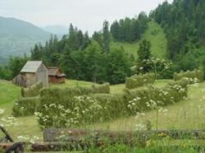 b&b bij Vlaming in Roemenie