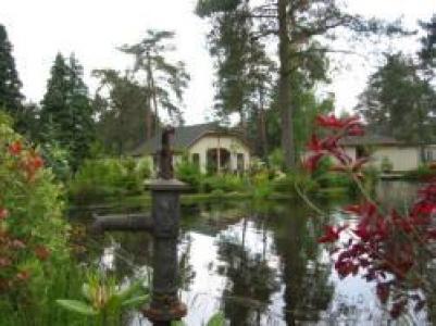 Vakantiehuisje Veluwe Bosuil Beekbergen bij Apeldoorn