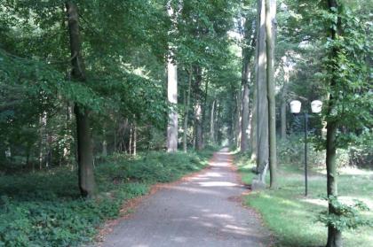 Herfstvakantie,Kerst en Nieuw Vieren in Vakantieparkt  HENGELHOEF,zwemmen,fietsen,vissen,wandelen steden bezoeken.