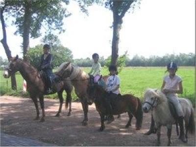 Den mollenhof63, ontspanning in de achterhoek  (winterswijk, gelderland, paarden, paardentoerisme)