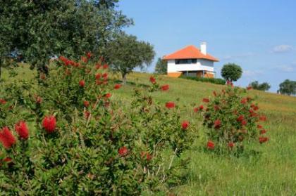 Casa a Oliveira voor een verrassend aangenaam verblijf in Portugal