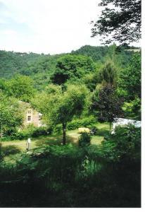 genieten van een canvas huisje in het groen