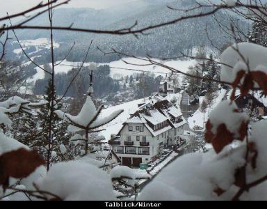 Vakantiewoning Zwarte Woud, Pension Talblick