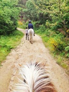 kamperen bij de boer in Portugal met o.a. paardrijden en pottenbakken!