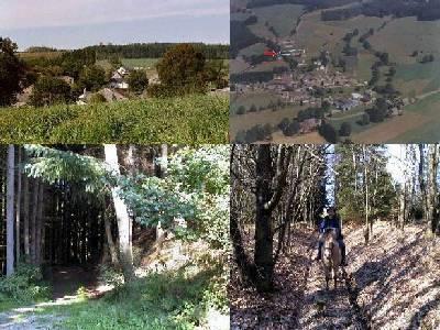 Ardennen vakantieverblijf  6p regio Vielsalm
