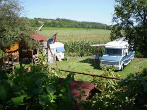 HelloHalloPark Hongarije Camping