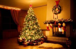 Ardennen vakantiehuizen vrij met Kerstmis