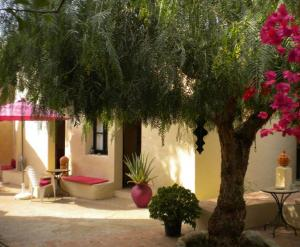 Bed and Breakfast Algarve Zuid Portugal O Tartufo